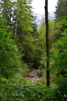 Úton Scheffauból a Hintersteiner See irányába