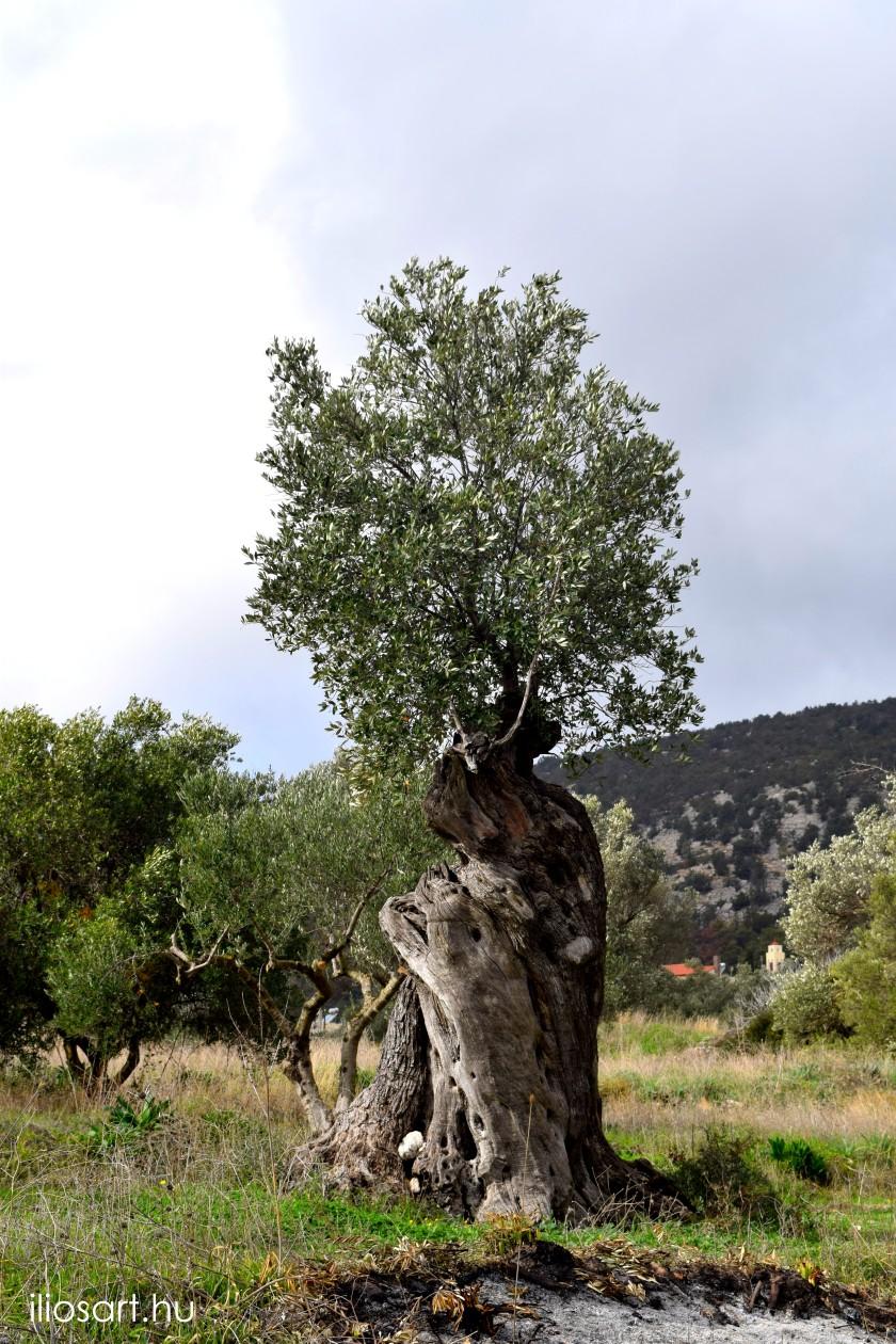 Monolithos Elies