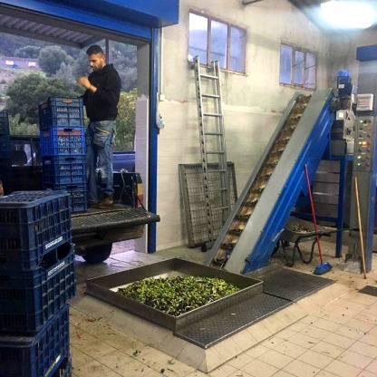 Olive factory Apollona by Mariann Lipcsei